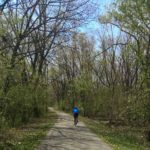 Forest Preserve Path